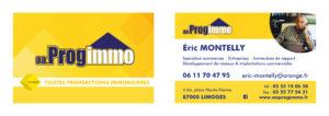 carte-de-visite-progimmo-supports-imprimes